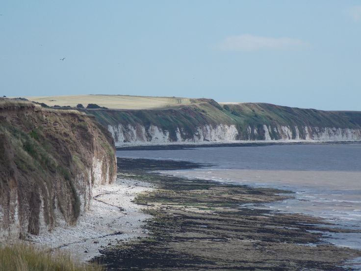 From Sewerby cliff top looking towards Flamborough Head, East Yorkshire