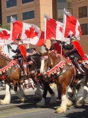 Calgary Stampede: What to do with kids | Today's Parent Magazine