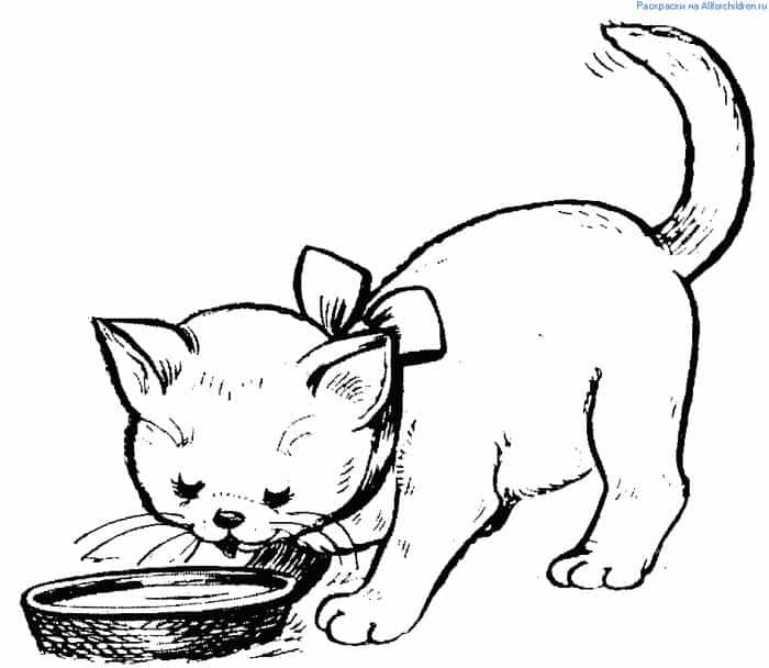 Kitten Eating Coloring Pages Animal Coloring Pages Cat Coloring Page Coloring Pages