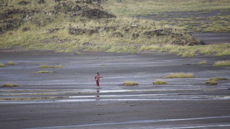 Les animaux et le farniente Type: Safari court en lodges avec extension possible à Zanzibar. Durée: 5 jours/4 nuits Condition: Ce programme est conçu pour découvrir la faune sauvage en 5 jours a…