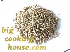 coriander_seeds_dhania_recipes_asian