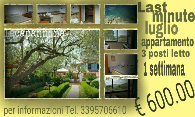 #offerta #lastminute #vacanze #cilento #campania #salerno #lacapanninacilento #residence #casavacanze #appartamenti #affittacamere