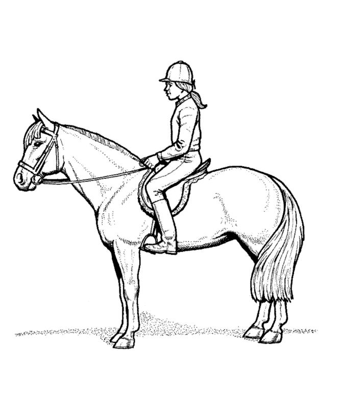Coloring Pages Girl Riding Horse. horseback riding coloring page a ...