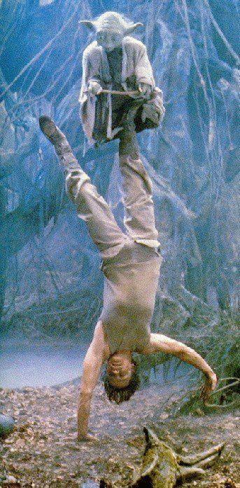 Yoda and Luke Skywalker.