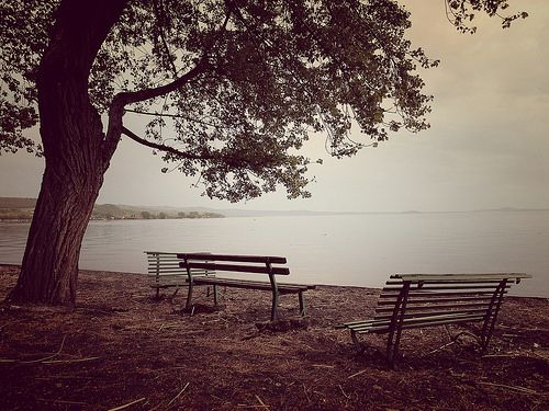 momenti assenti - Bolsena Lake
