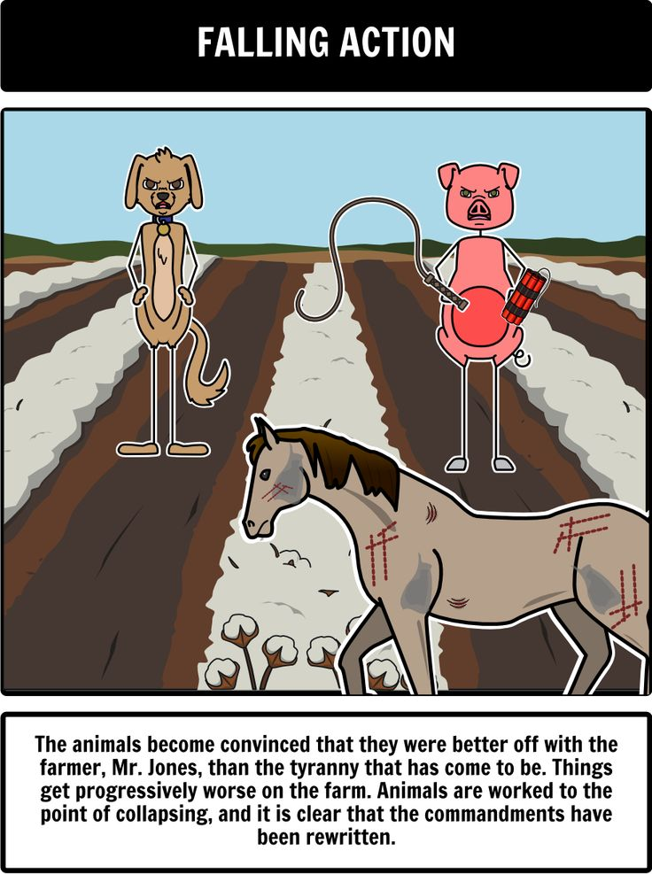 Animal Farm by George Orwell - Close Up of Plot Diagram: Understanding the Animal Farm plot can be tricky for some students. Help teach Animal Farm Allegory with a storyboard! Here is a close up of the Falling Action from the Animal Farm book.