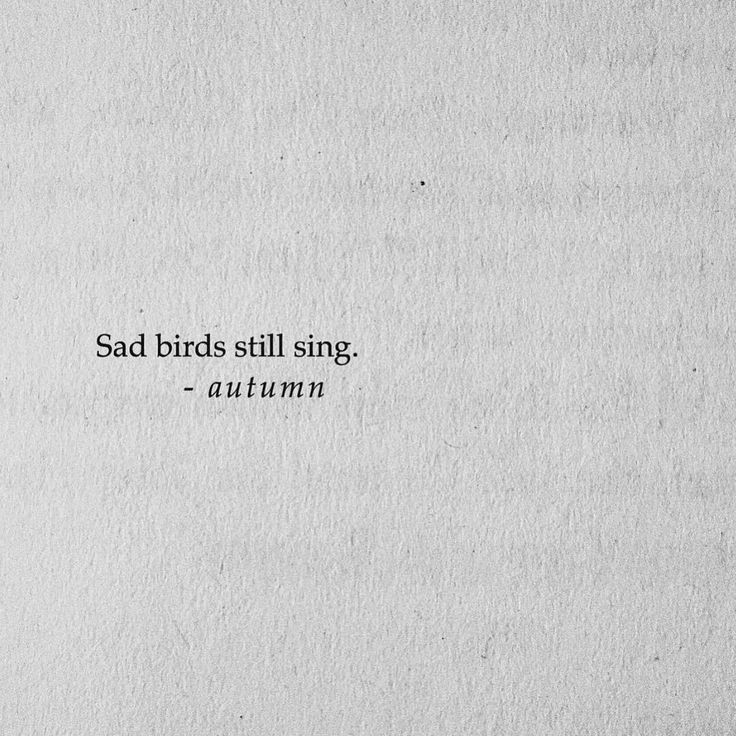 autumnpoetry#poet #poem #poetry #poetryofig #writersofinstagram #words #read #coffee #bookstore #writingcommunity #lovepoem #poems #lovepoems #instapoet #poetic #poetrygram #books #bookstagram #barnesandnoble #writer #spilledink #authorsofinstagram #poetics #linguistics #poetsofinstagram #wordswithqueens #wordswithkings