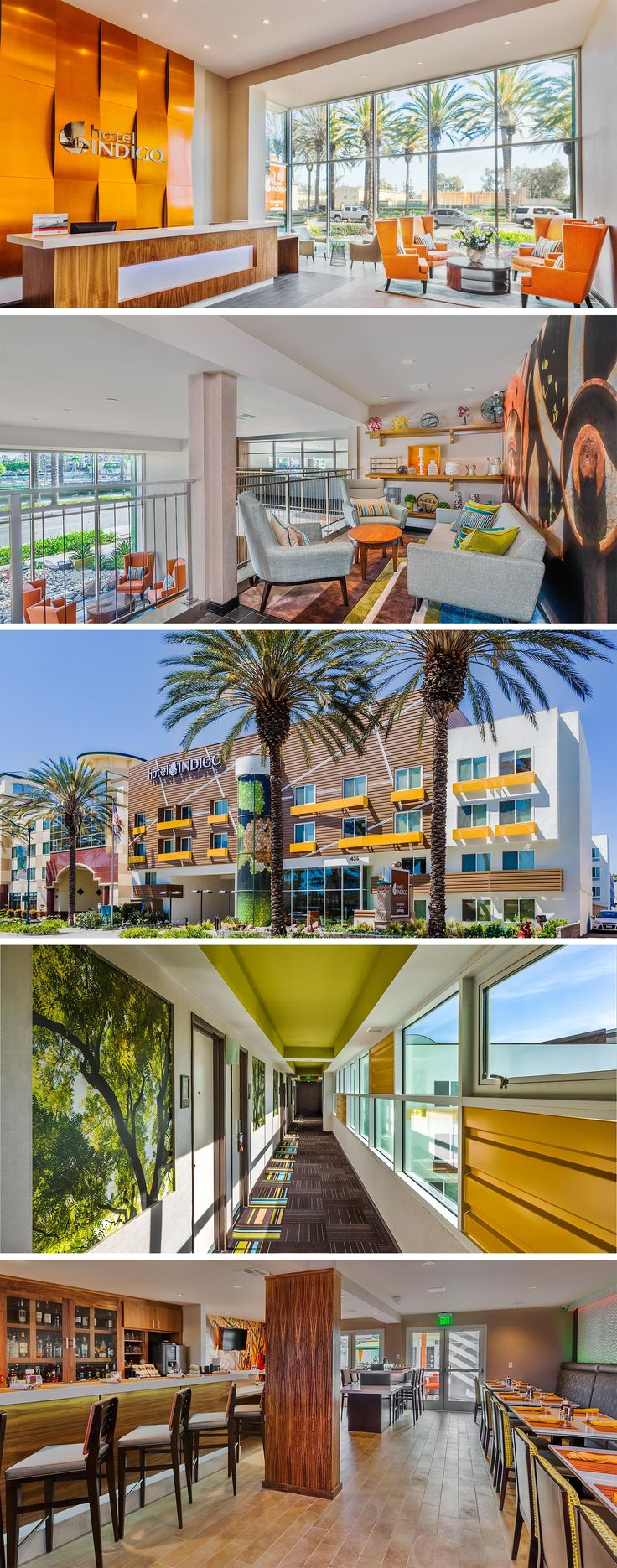 Hotel Indigo Anaheim is my recommendation of where to stay near Disneyland. Close to the parks, affordable and stylish with great customer service.