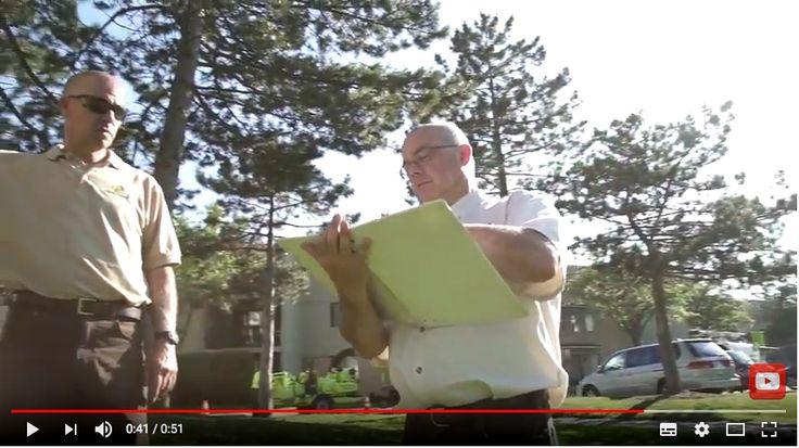 Ontree Onpoint w/ Carson Arthur - Episode #2 - How to spot declining trees. #carsonarthur #hgtv  #gta #ontree #treecareservices