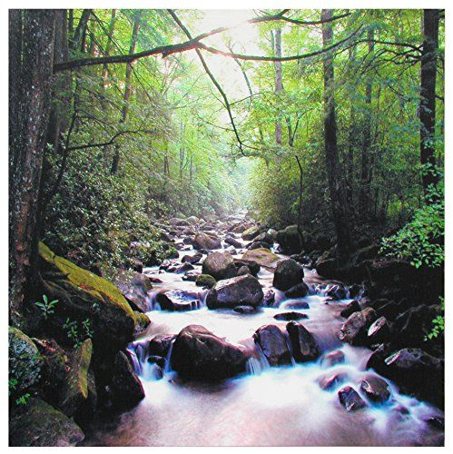 Oriental Furniture Nature Photography Prints, 19-Inch River of Life Canvas Wall Art ORIENTAL FURNITURE http://www.amazon.com/dp/B0061P65IE/ref=cm_sw_r_pi_dp_2lggvb1B7N1XQ