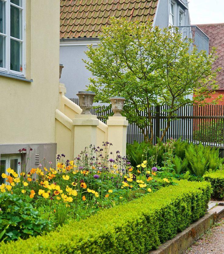 The pics from Martin and Åsa Hadmyr's beautiful garden are now up on my blog www.arkitektenstradgard.se Nu ligger alla bilder från Martin och Åsa Hadmyrs trädgård på bloggen! 🙆 #arkitektenstradgard #gardendesign #gardeninspiration #trädgårdsinspiration #trädgårdsdesign #poppy #instagarden #landscapedesign #buxbom #frontgarden #allium