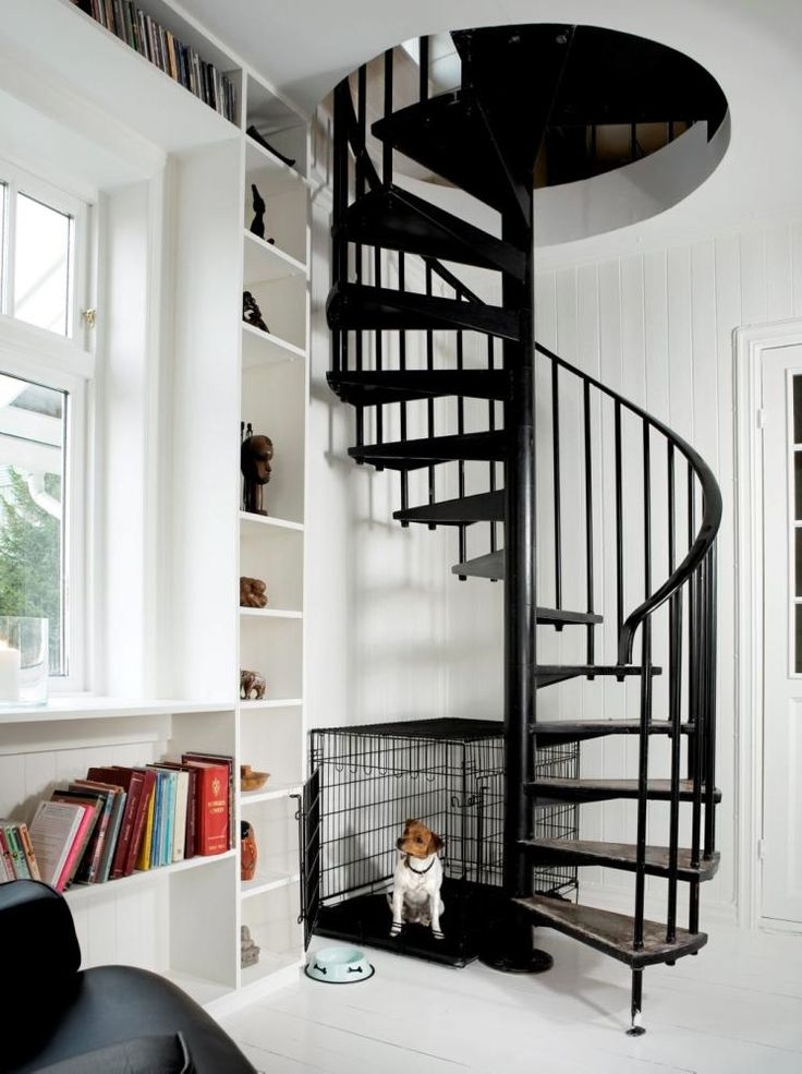 escalier en colimaçon en métal noir à côté de la bibliothèque murale