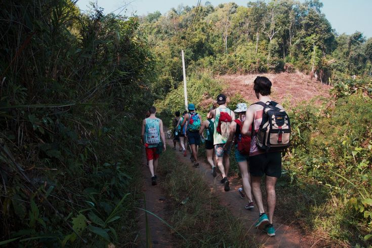 Chiang Mai - Trekking and Puppies