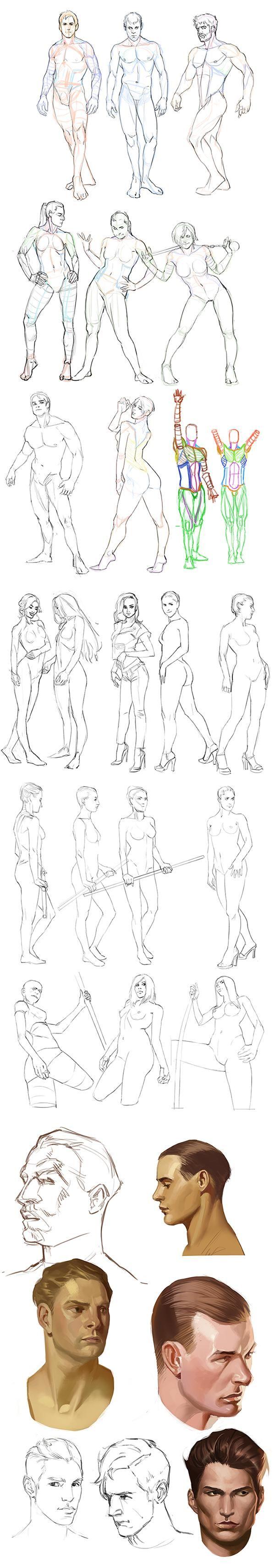http://www.deviantart.com/journal/Anatomy-practice-555933771