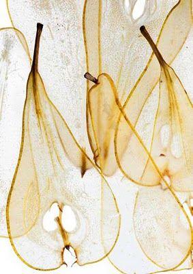 Pierre-François Couderc.  Pear Papyrus - technically not paper, just paper & fruit-like