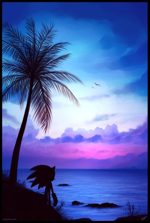 Sonic the Hedgehog on the beach... WOW. That sunset is AMAZING. This is awesome artwork.