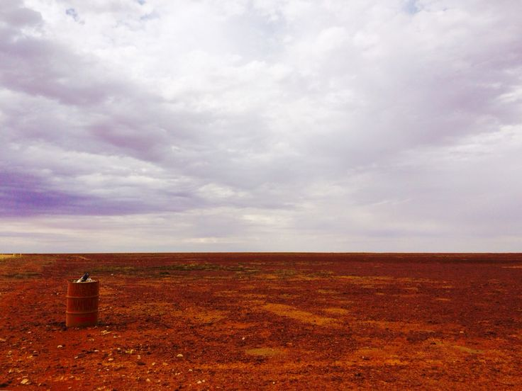 The Aussie Outback, driving to Bourke