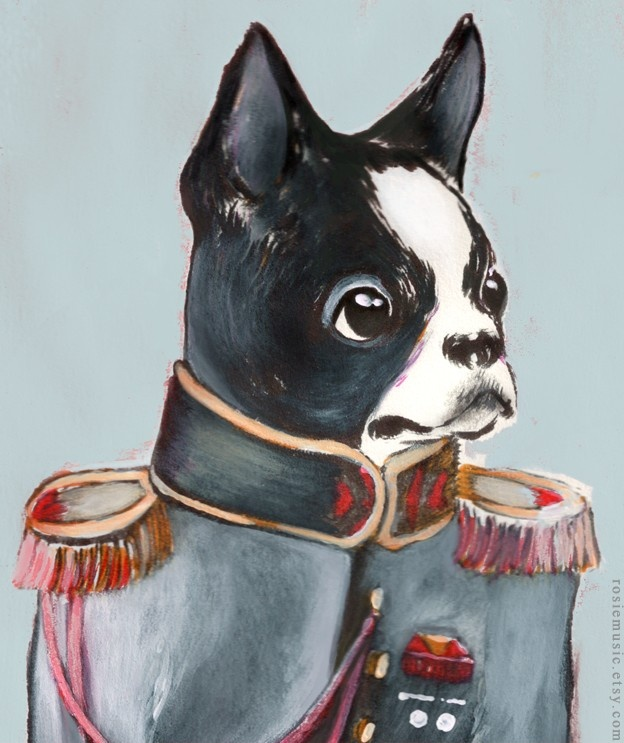 The Captain. by Rosie Music: Etsy, Rosiemusic, Illustration, Captain 8X10, Boston Terriers, Boston Terriorist, Things Boston