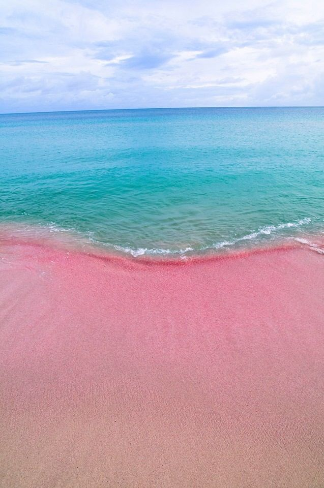 Barbudas Sparkling Pink Sand Beaches Antigua Barbuda