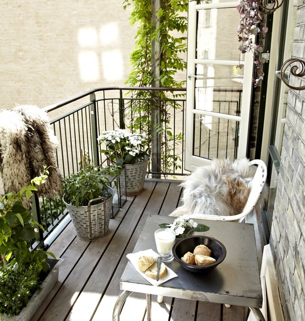urban terrace - see the greenery & the hide for coziness