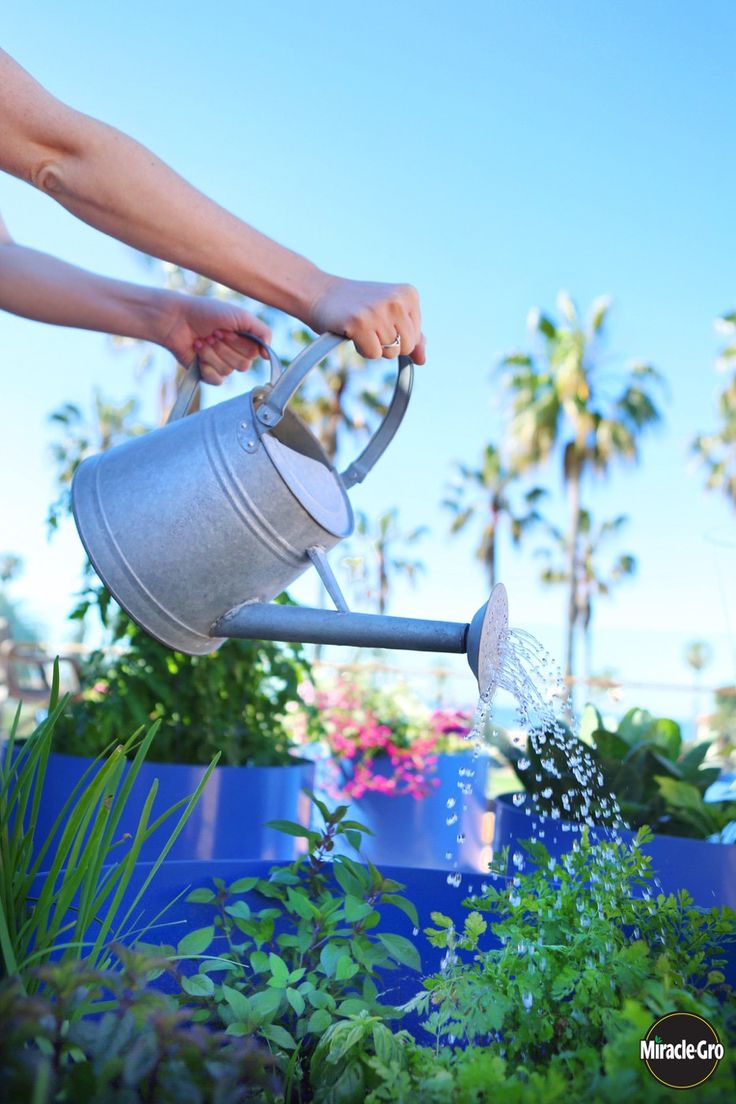 103 best Make Your World Green images on Pinterest Watering cans