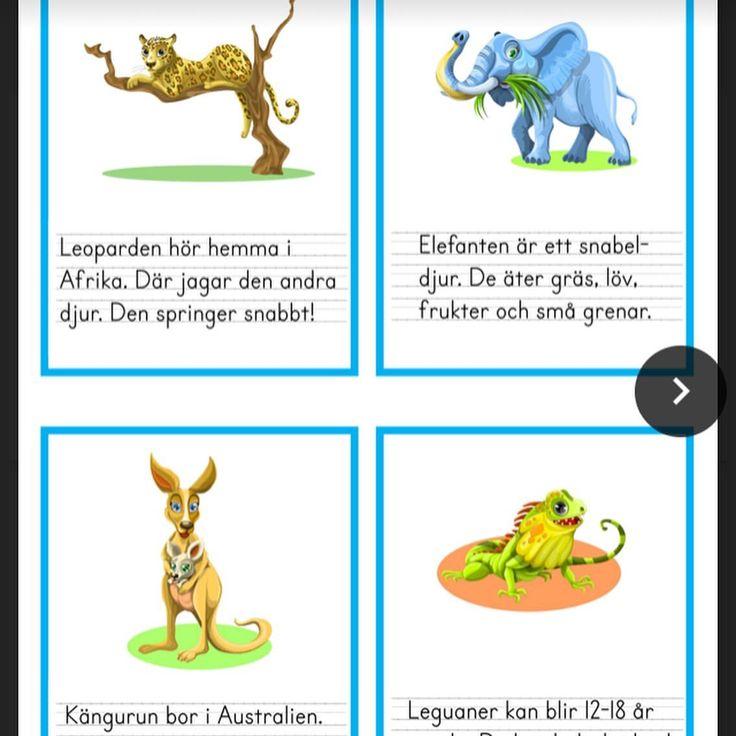 Indisk Lärare Synonym