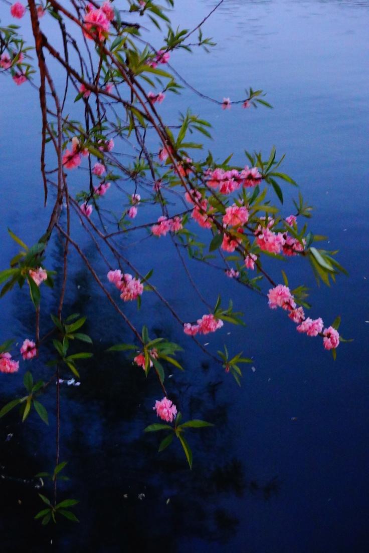 Hangzhou's West Lake at sunset