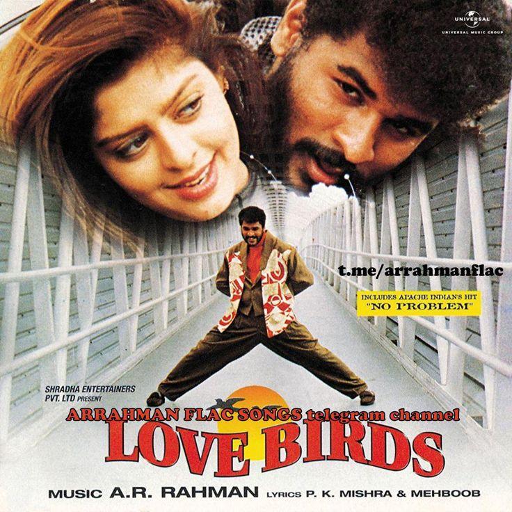 Love birds Hindi-1996 ARRahman lossless flac | Songs, Mp3