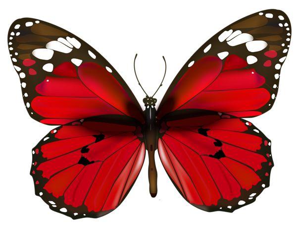 Red borboleta PNG Clipe