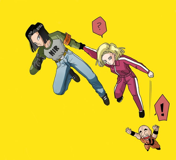 Android 17, Android 18, and Krillin
