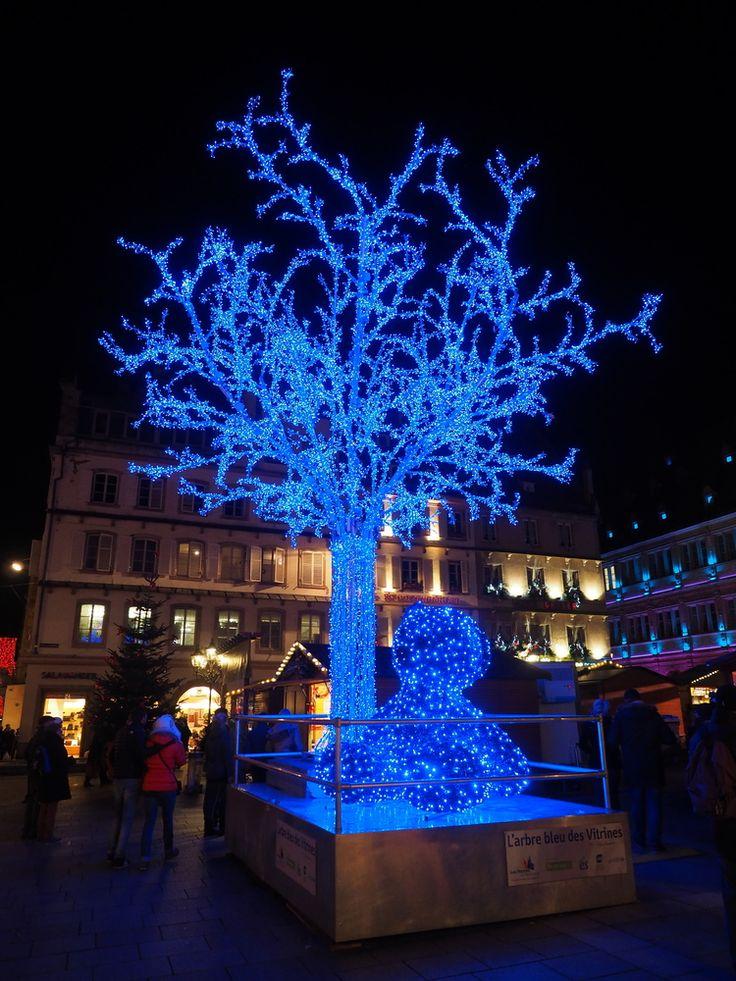 Christmas_Bear_Strasbourg.jpg
