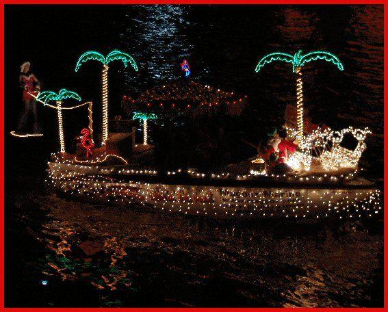 image - C5 Christmas Lights