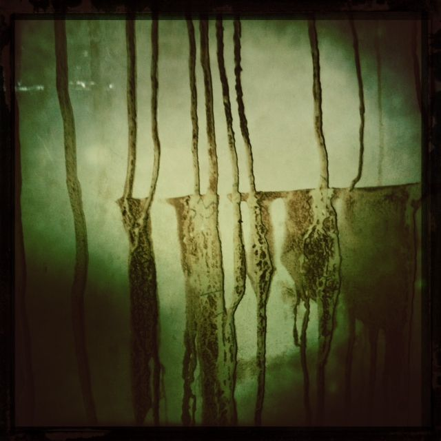 brinjal: Things Photography, Brinjal Drips, Favorite Places, Brain Food, Contemporary Photography, Photography Digital Art, Heart Lomo, Audacious Art