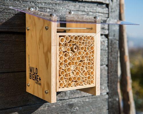 Das Wildbienen-Häuschen BeeHome Classic beinhaltet eine Startpopulation von 25 Mauerbienen-Kokons und kann auf dem  Stadtbalkon, im Einfamilienhausquartier oder im Schrebergarten bedenkenlos angebracht werden