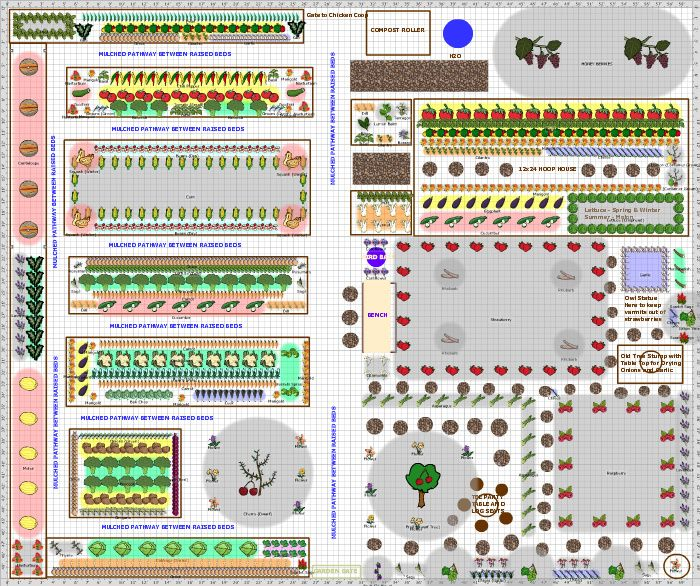140 best Vegetable Garden Plan