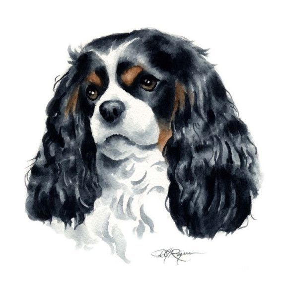 CAVALIER KING CHARLES Spaniel in Art