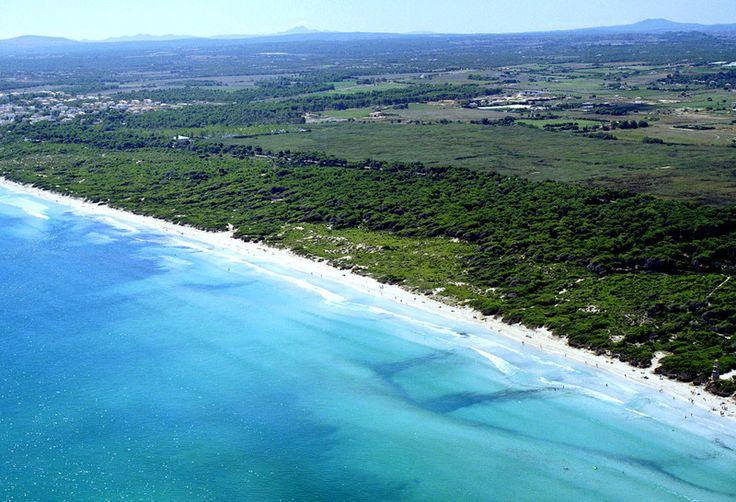 6.+Playas+de+Muro+(Mallorca,+Islas+Baleares)