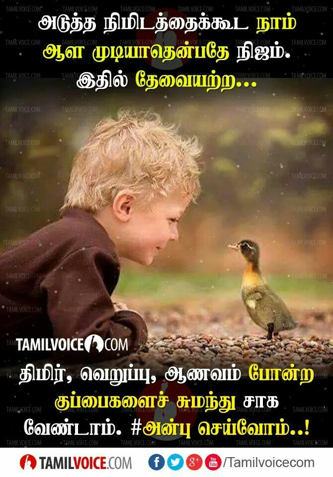 Pin By Senthil Nathan On Tamil Quotes Voice Quotes Safe Quotes Picture Quotes