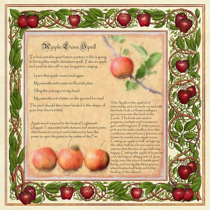 http://th07.deviantart.net/fs70/PRE/i/2011/230/8/8/apple_magic_page_2_by_brightstone-d471upn.jpg