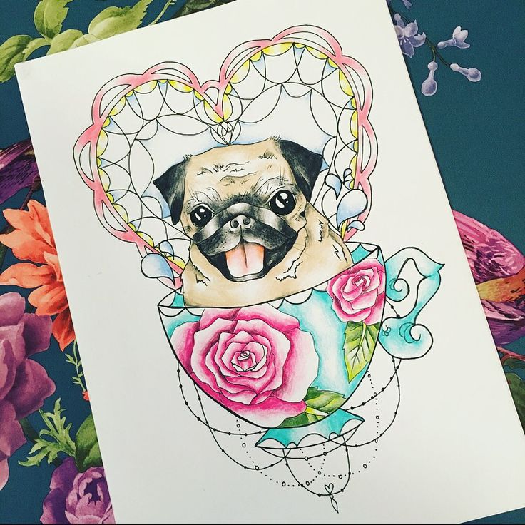 best 25 teacup pug ideas on pinterest baby pugs baby dogs and teacup animals. Black Bedroom Furniture Sets. Home Design Ideas