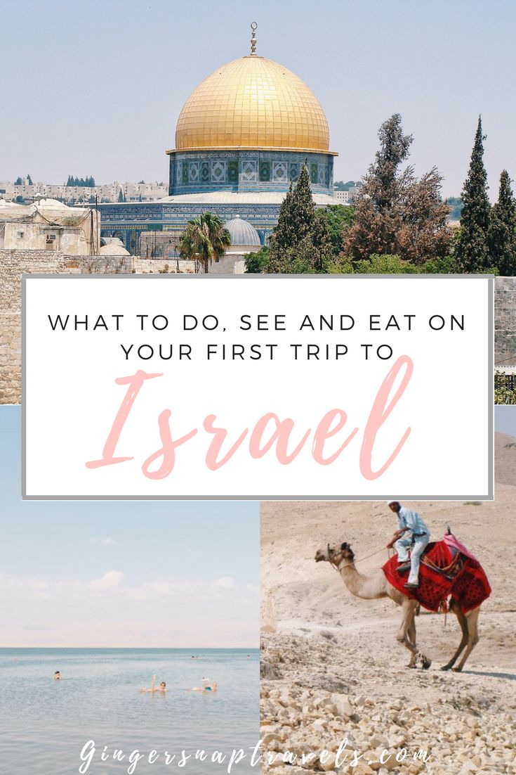 One of the most incredible countries I have ever visited is without a doubt, Israel. It is a tiny country, yet it is rich in ancient history, beautifully diverse landscapes, delicious cuisine, friendly people, and an overall welcoming atmosphere. For such a small country, you would be amazed at how much there is to see! For anyone visiting Israel for the first time, I've complied a list of the things you must do, see, and eat while you're there.