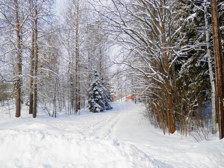 "Saunakallio,Finland  ""Land Of Snow And Sorrow"""
