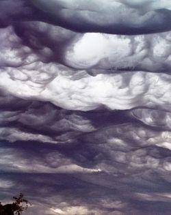 A Guide to the Undulatus Asperatus Cloud