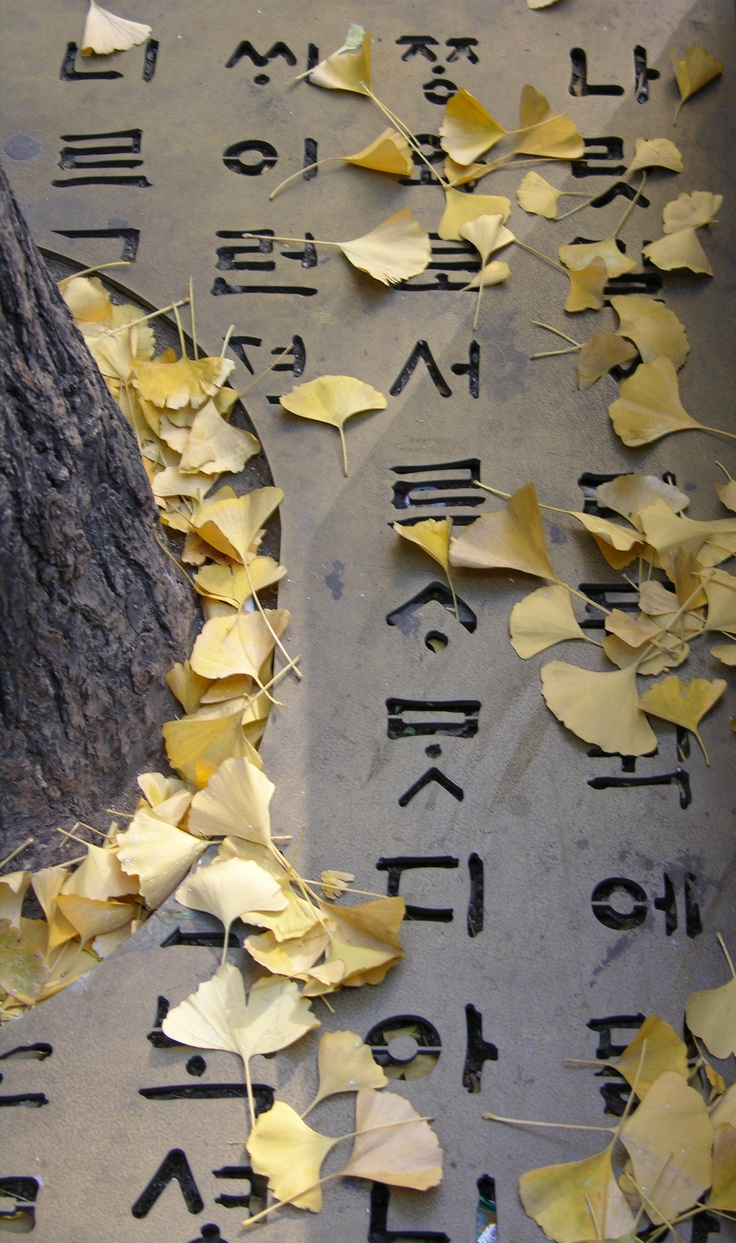 learn to write hangul and speak korean