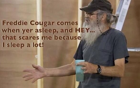 Freddie cougar funny stuff pinterest - Pictures of freddy cougar ...