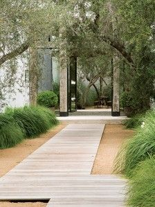Native grasses, decomposed granite and a small grove of olive trees line the front walk decking.