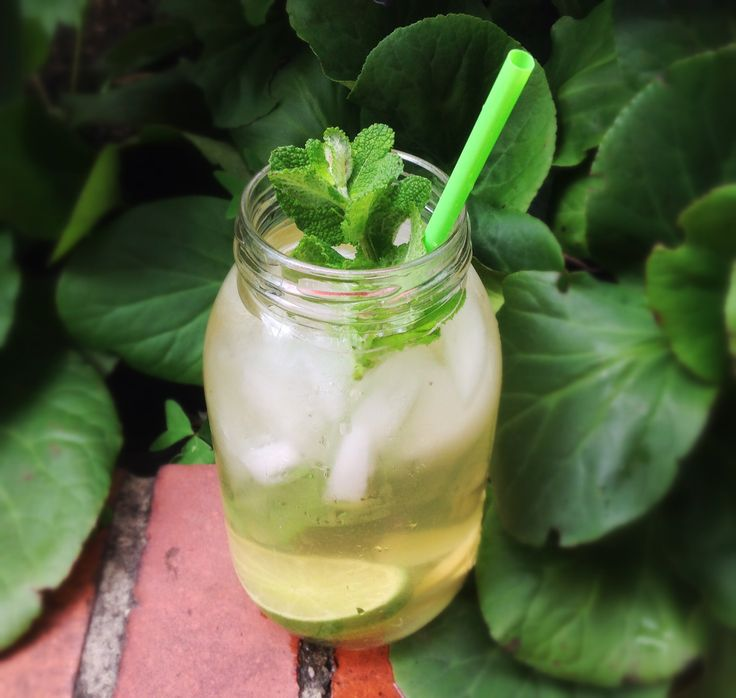 St. Dalfour apple and cinnamon green tea with ginger, lime and mint.
