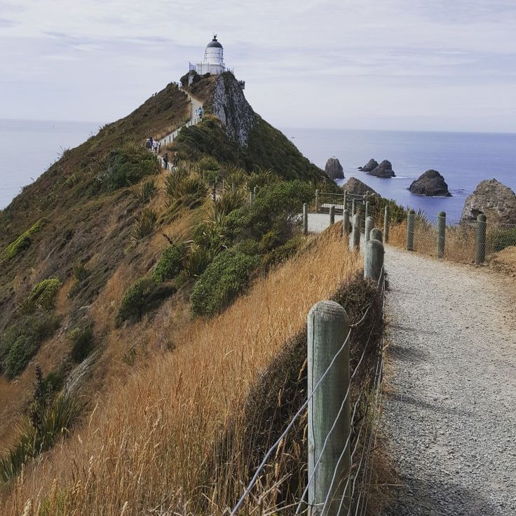 Walking the track to Nugget Point Catlins South Island NZ