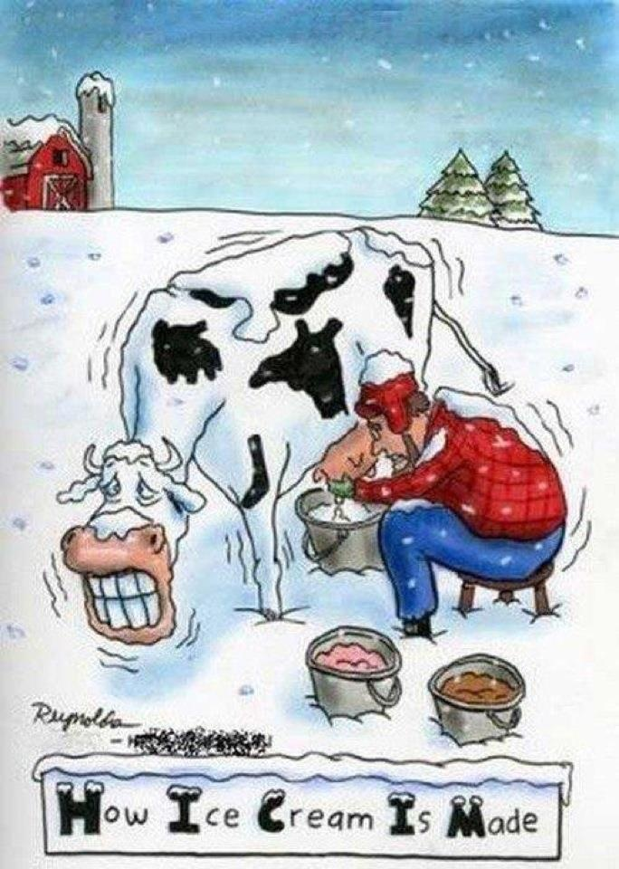 Just because my mom left her pintrest open on her laptop when I go to use it........ She loves cows, so why not pin a cow funny loll