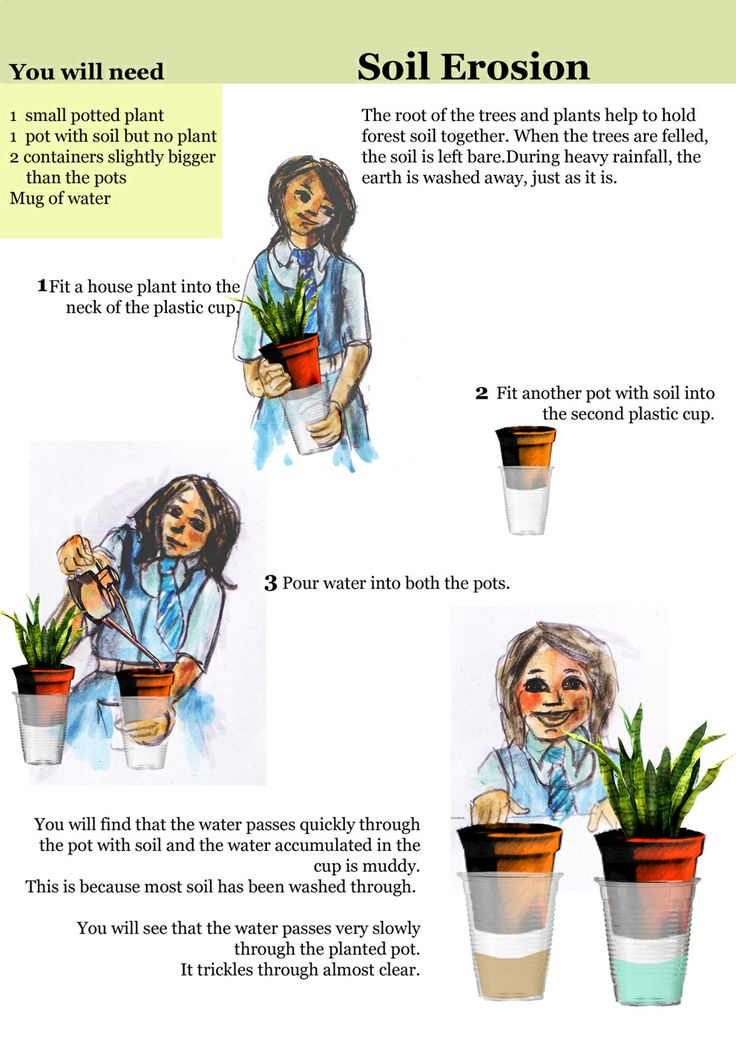 17 best images about soil unit science on pinterest for Soil information for kids